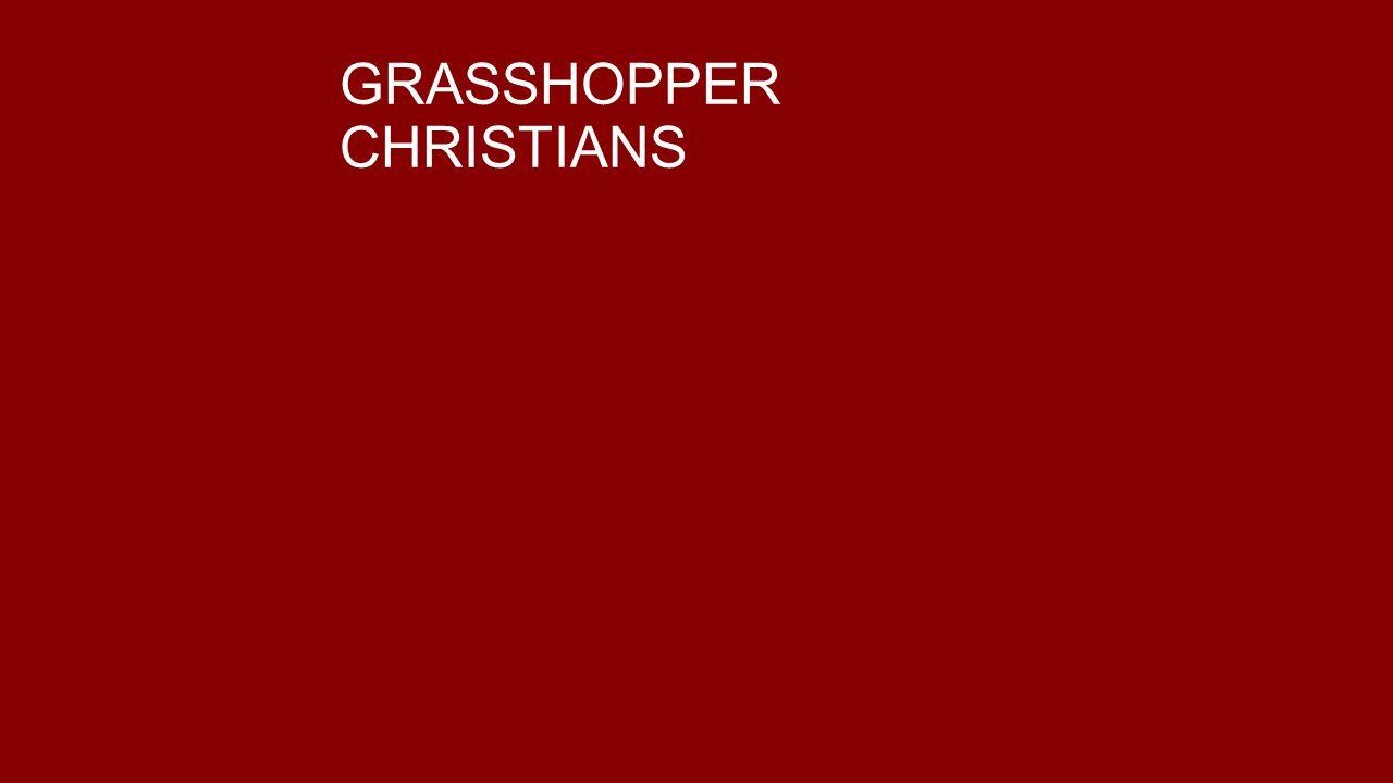GRASSHOPPER CHRISTIANS