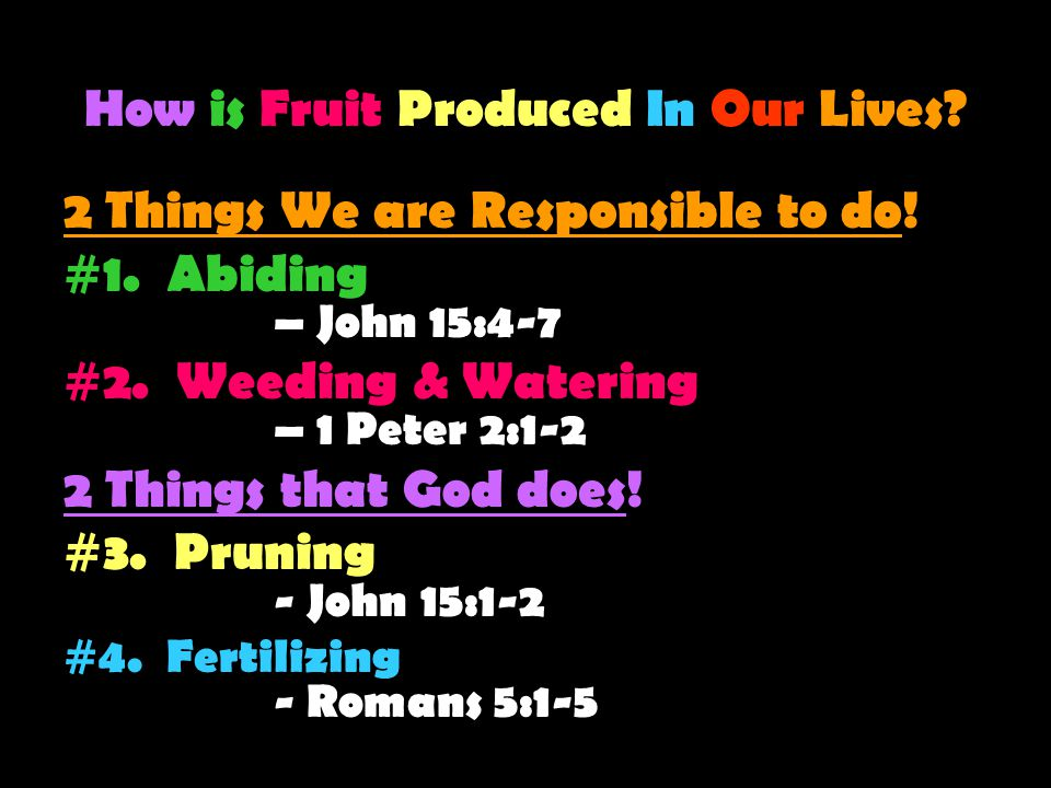 How is Fruit Produced In Our Lives. 2 Things We are Responsible to do.