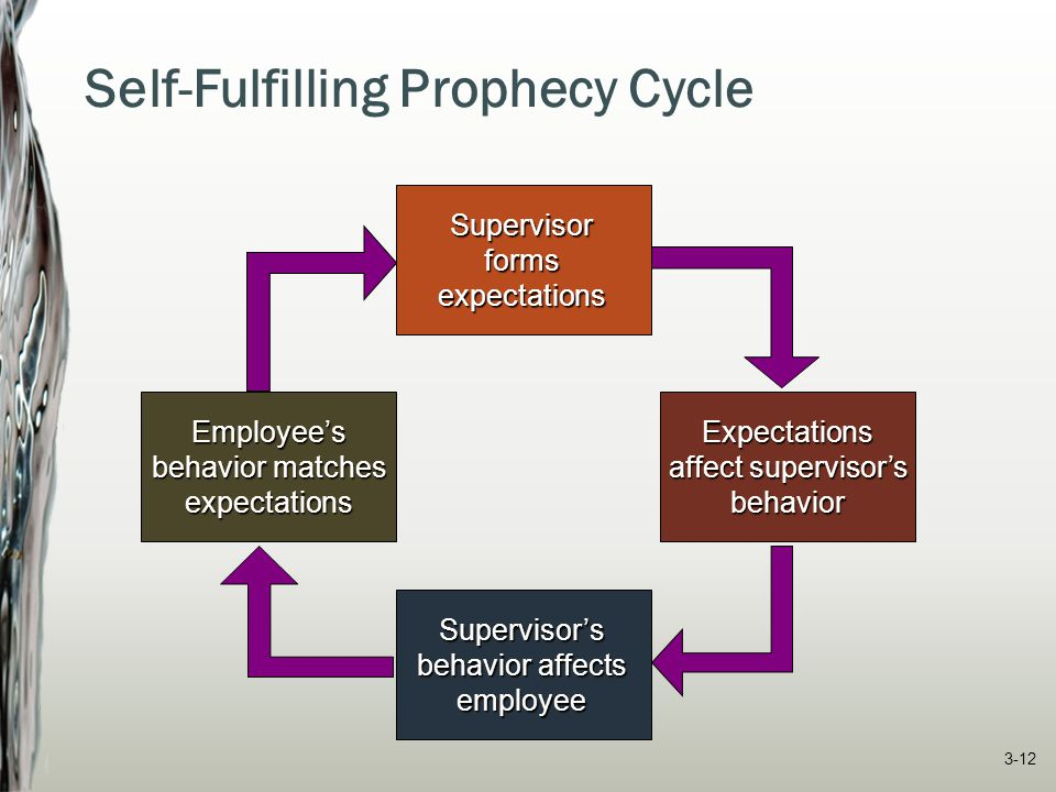 Self-Fulfilling Prophecy Cycle Supervisorformsexpectations Expectations affect supervisor's behavior Supervisor's behavior affects employee Employee's