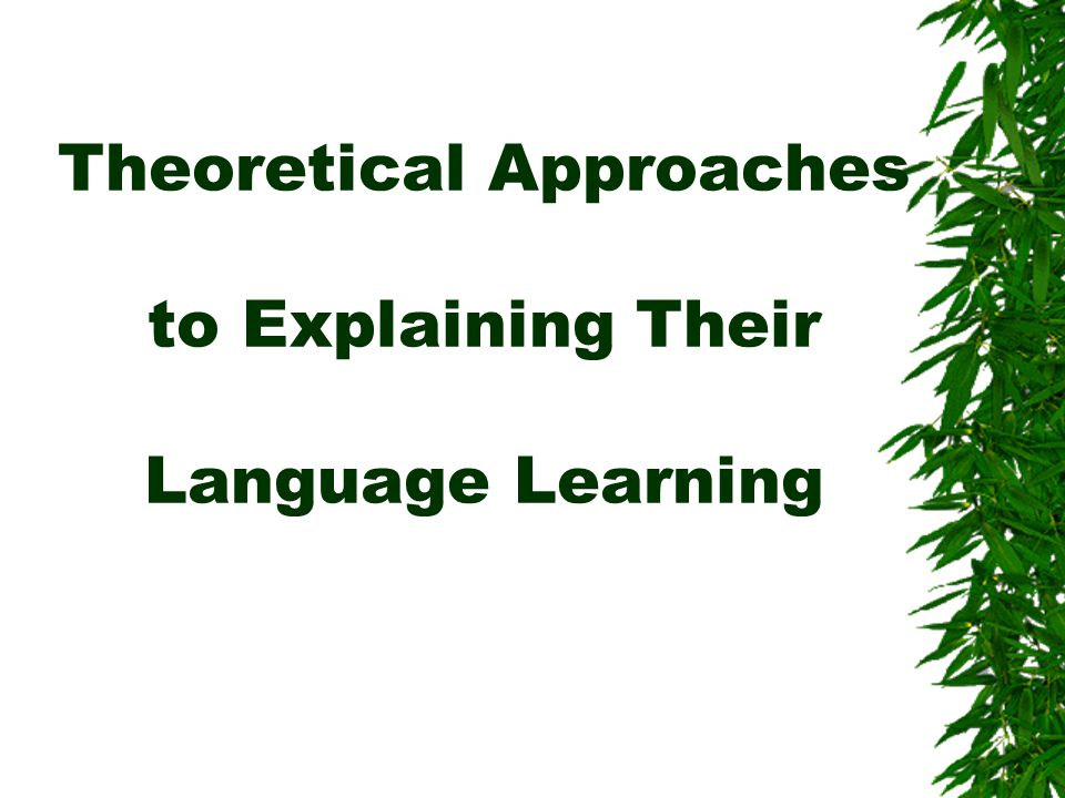 Theoretical Approaches to Explaining Their Language Learning