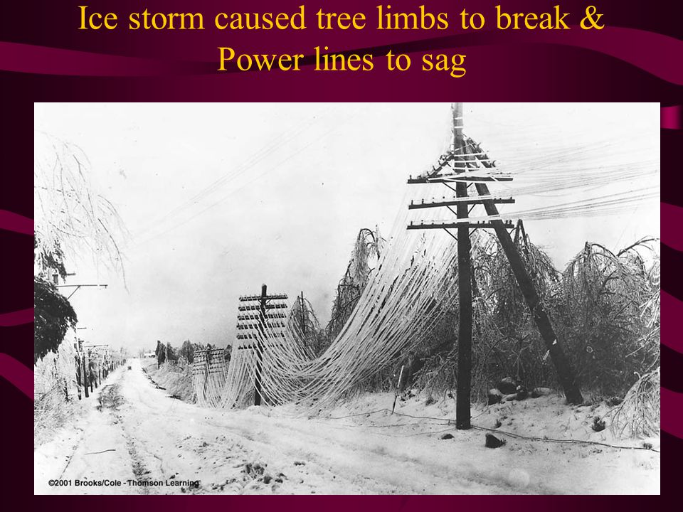 Ice storm caused tree limbs to break & Power lines to sag