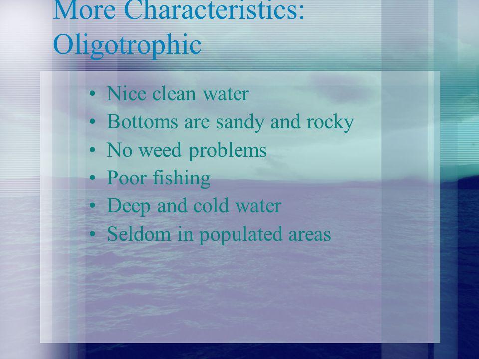 Water Transparency Secci Disk 10 meters depth Few suspended algae.