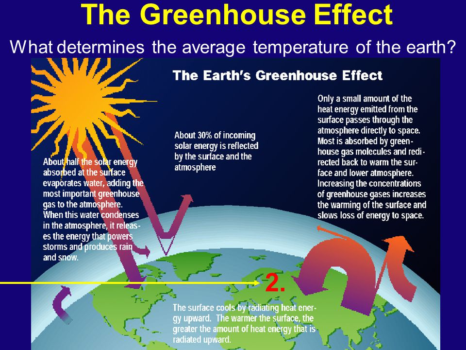 The Greenhouse Effect What determines the average temperature of the earth? 2.