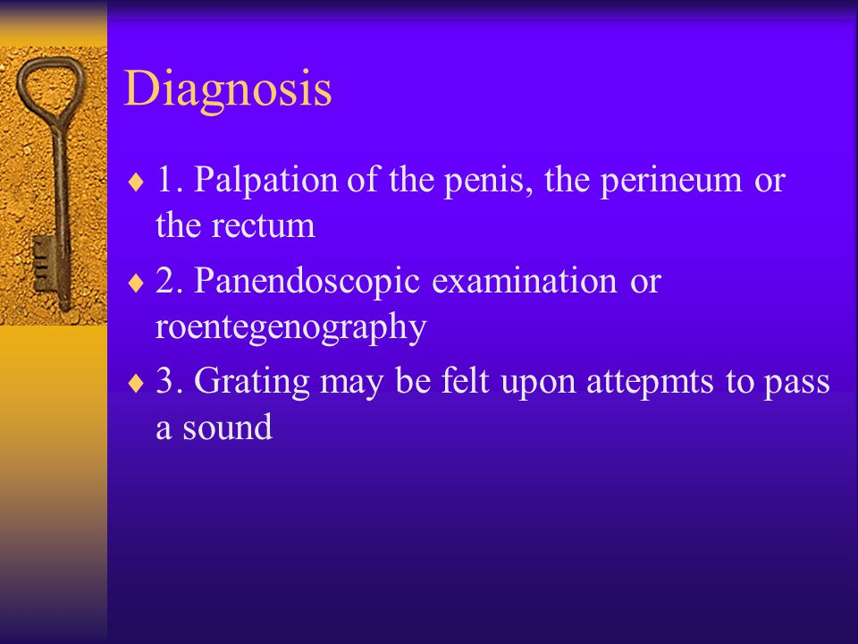 Diagnosis  1. Palpation of the penis, the perineum or the rectum  2.