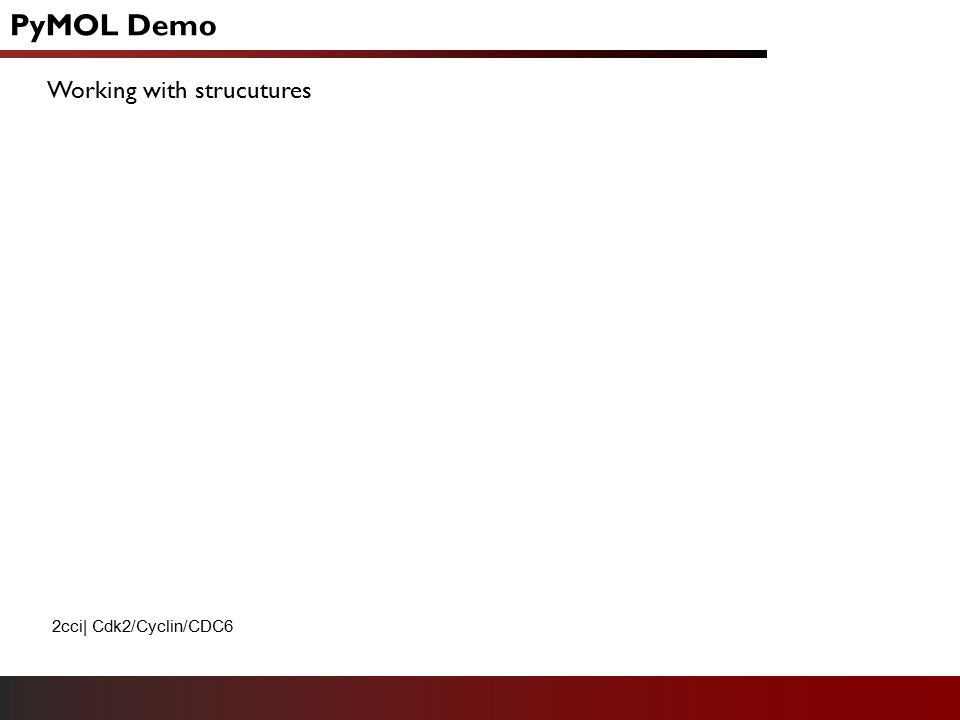 PyMOL Demo Working with strucutures 2cci  Cdk2/Cyclin/CDC6