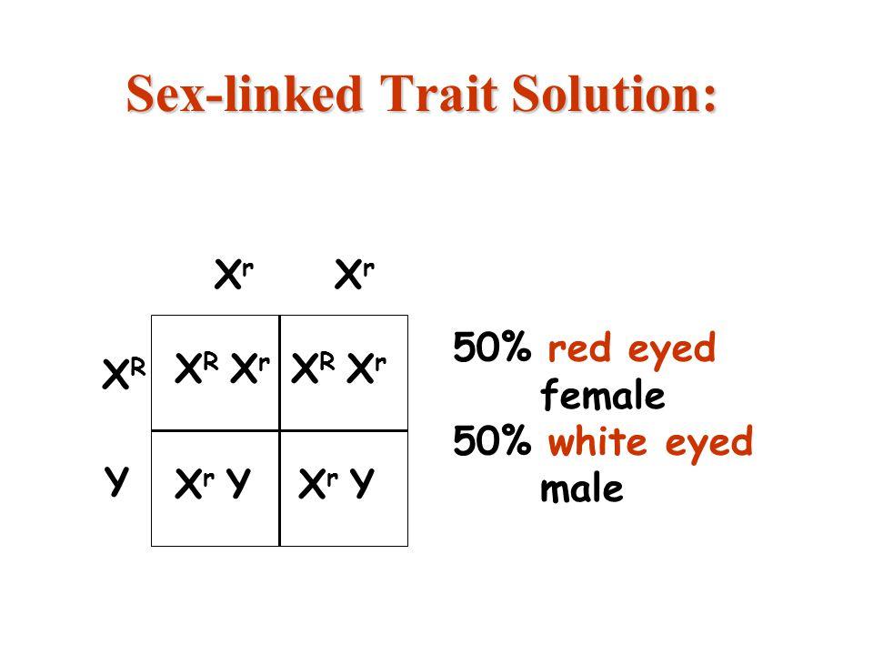 17 Sex-linked Trait Solution: X R X r X r Y X R X r X r Y 50% red eyed female 50% white eyed male XRXR XrXr XrXr Y copyright cmassengale