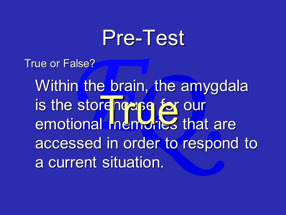 Q. E. Pre-Test Within the brain, the amygdala is the storehouse for our emotional memories that are accessed in order to respond to a current situatio