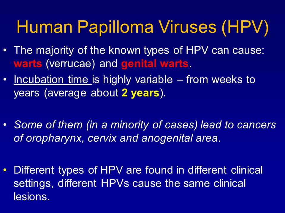 Human Papilloma Viruses (HPV) The majority of the known types of HPV can cause: warts (verrucae) and genital warts.