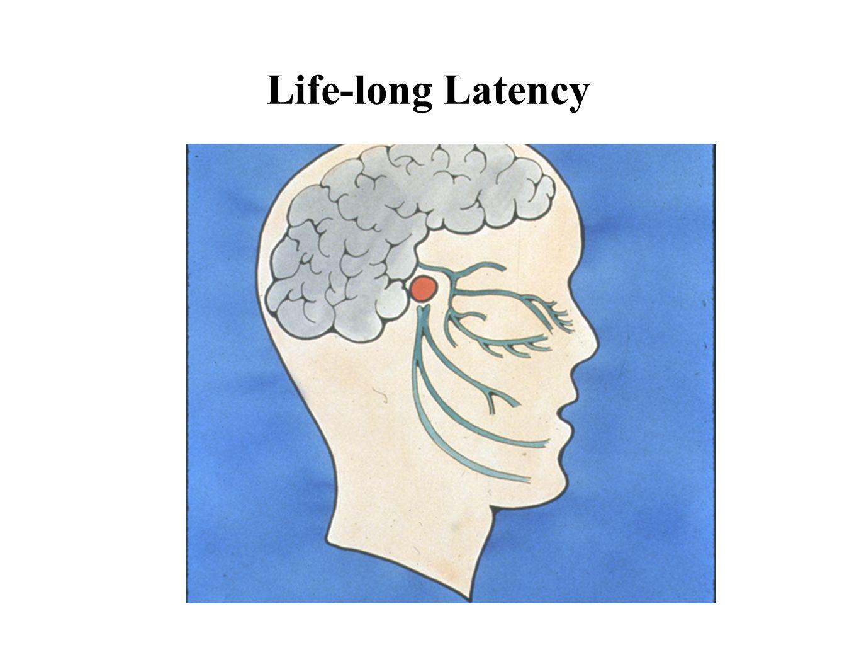 Life-long Latency