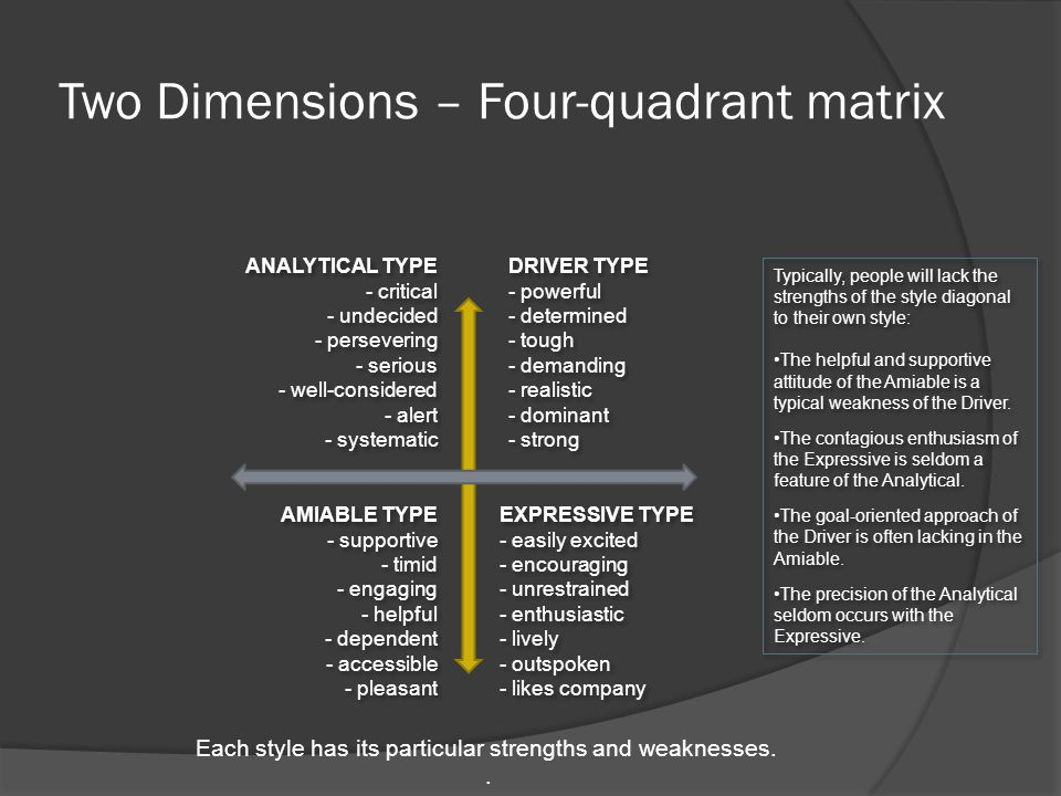 Two Dimensions – Four-quadrant matrix ANALYTICAL TYPE - critical - undecided - persevering - serious - well-considered - alert - systematic ANALYTICAL