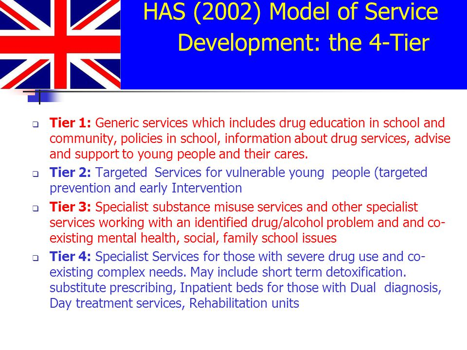 HAS (2002) Model of Service Development: the 4-Tier Model  Tier 1: Generic services which includes drug education in school and community, policies in school, information about drug services, advise and support to young people and their cares.