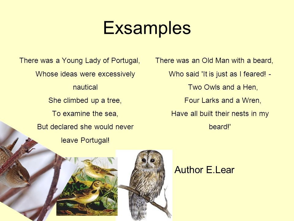 Exsamples There was a Young Lady of Portugal, Whose ideas were excessively nautical She climbed up a tree, To examine the sea, But declared she would