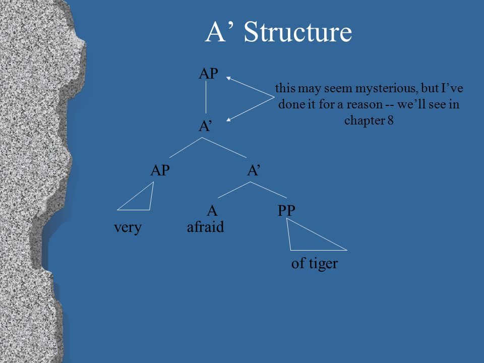A' Structure AP A' APA' A PP very afraid of tiger this may seem mysterious, but I've done it for a reason -- we'll see in chapter 8