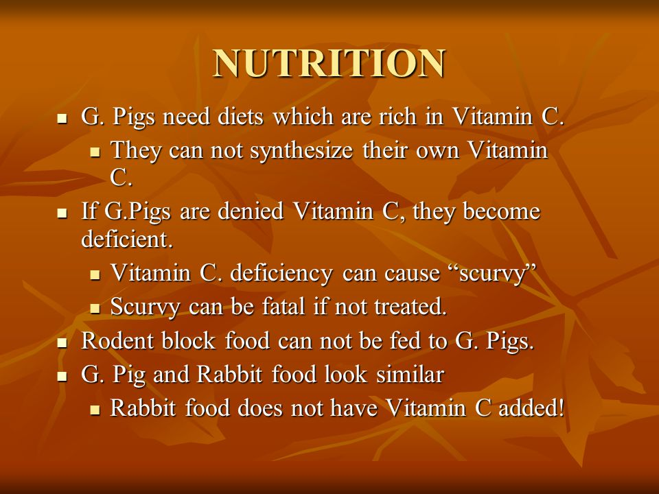 NUTRITION G. Pigs need diets which are rich in Vitamin C.