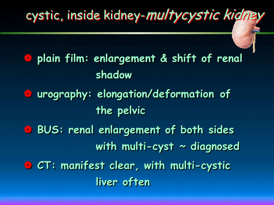cystic, inside kidney- renal cyst Multicystic kidney