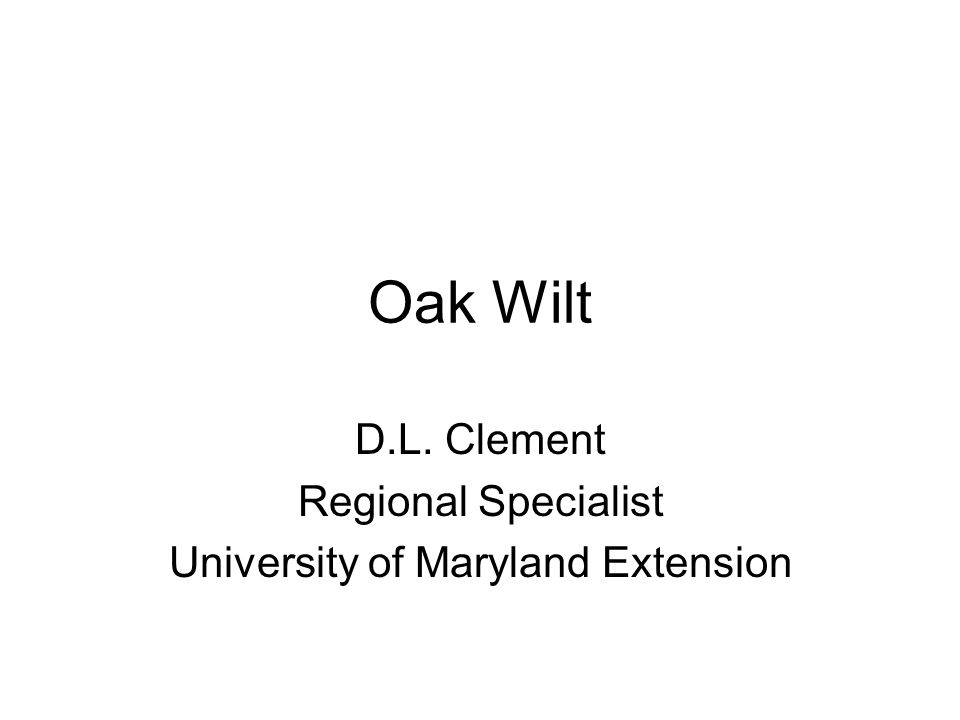Oak Wilt D.L. Clement Regional Specialist University of Maryland Extension