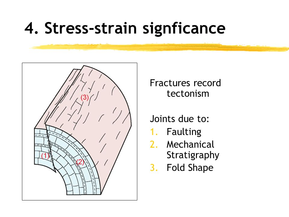 4. Stress-strain signficance Fractures record tectonism Joints due to: 1.Faulting 2.Mechanical Stratigraphy 3.Fold Shape