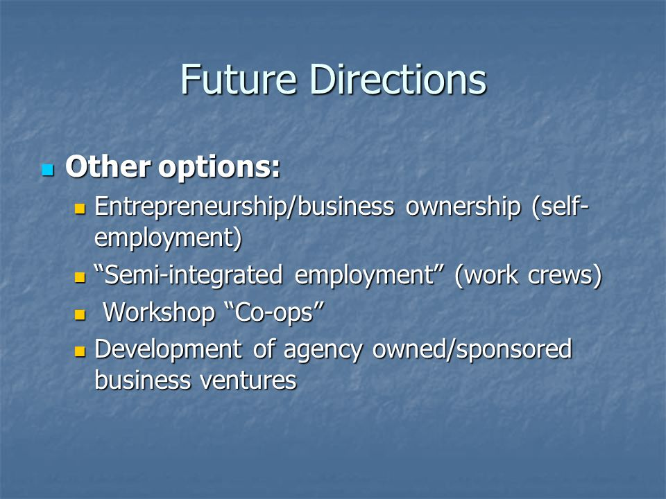 Future Directions Other options: Other options: Entrepreneurship/business ownership (self- employment) Entrepreneurship/business ownership (self- empl
