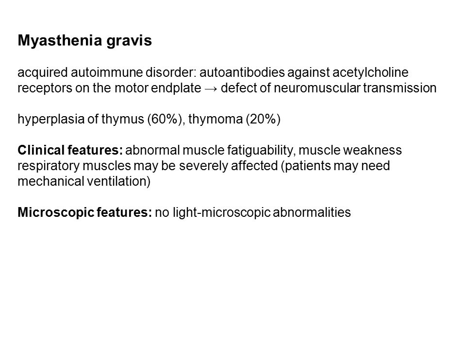 Myasthenia gravis acquired autoimmune disorder: autoantibodies against acetylcholine receptors on the motor endplate → defect of neuromuscular transmission hyperplasia of thymus (60%), thymoma (20%) Clinical features: abnormal muscle fatiguability, muscle weakness respiratory muscles may be severely affected (patients may need mechanical ventilation) Microscopic features: no light-microscopic abnormalities