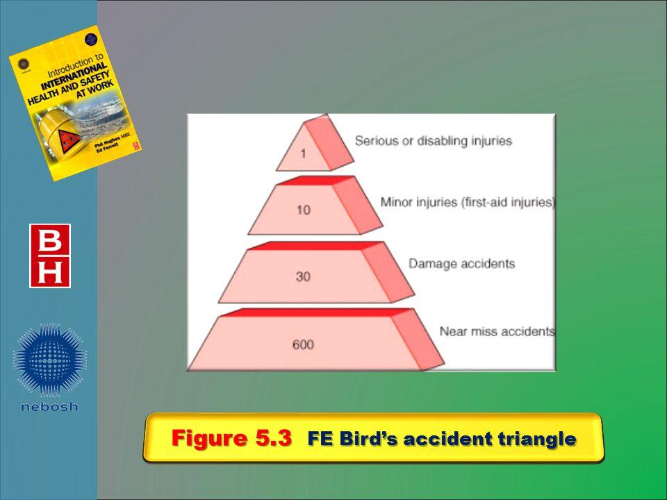 Figure 5.3 FE Bird's accident triangle