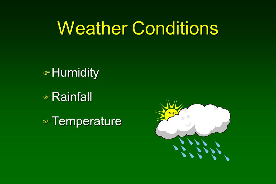 Weather Conditions F Humidity F Rainfall F Temperature