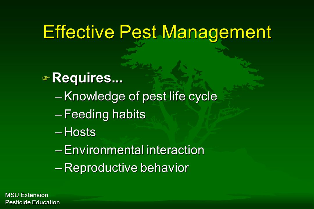 MSU Extension Pesticide Education Infectious Disease Management F Resistance –Superior species, cultivars, varieties F Avoidance –Appropriate site conditions F Elimination –Sanitation; some fungicides F Protection –Most fungicides