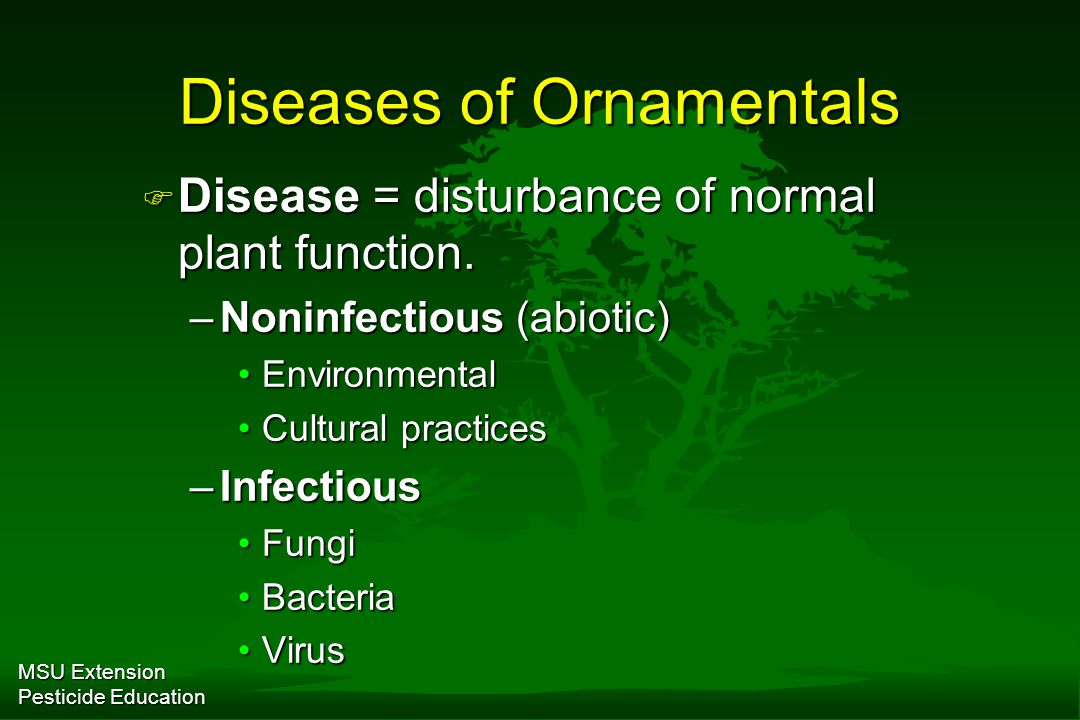 MSU Extension Pesticide Education Diseases of Ornamentals F Disease = disturbance of normal plant function.