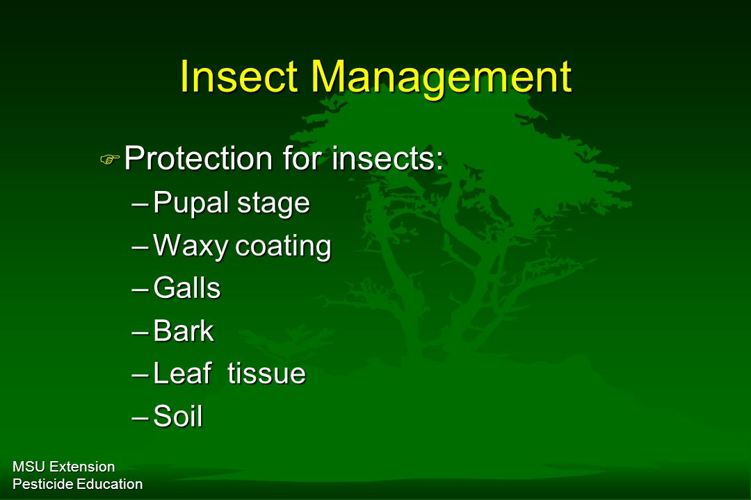 MSU Extension Pesticide Education Insect Management F Protection for insects: –Pupal stage –Waxy coating –Galls –Bark –Leaf tissue –Soil