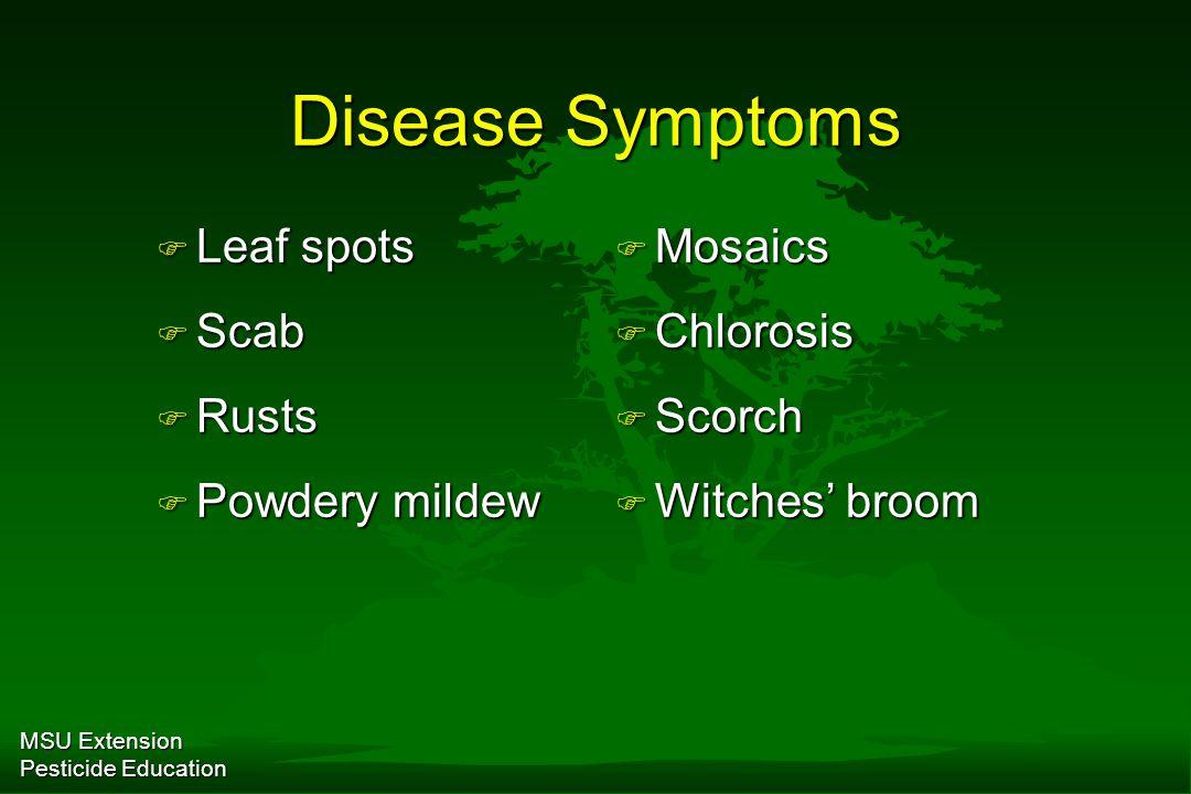 MSU Extension Pesticide Education Disease Symptoms F Leaf spots F Scab F Rusts F Powdery mildew F Mosaics F Chlorosis F Scorch F Witches' broom