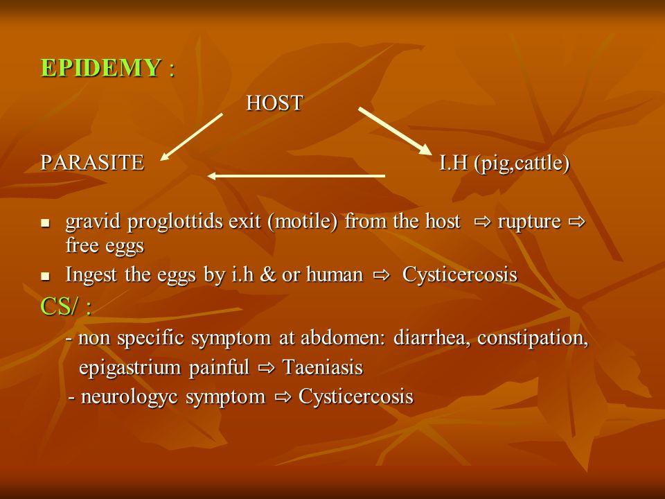 EPIDEMY : HOST HOST PARASITEI.H (pig,cattle) gravid proglottids exit (motile) from the host ⇨ rupture ⇨ free eggs gravid proglottids exit (motile) fro