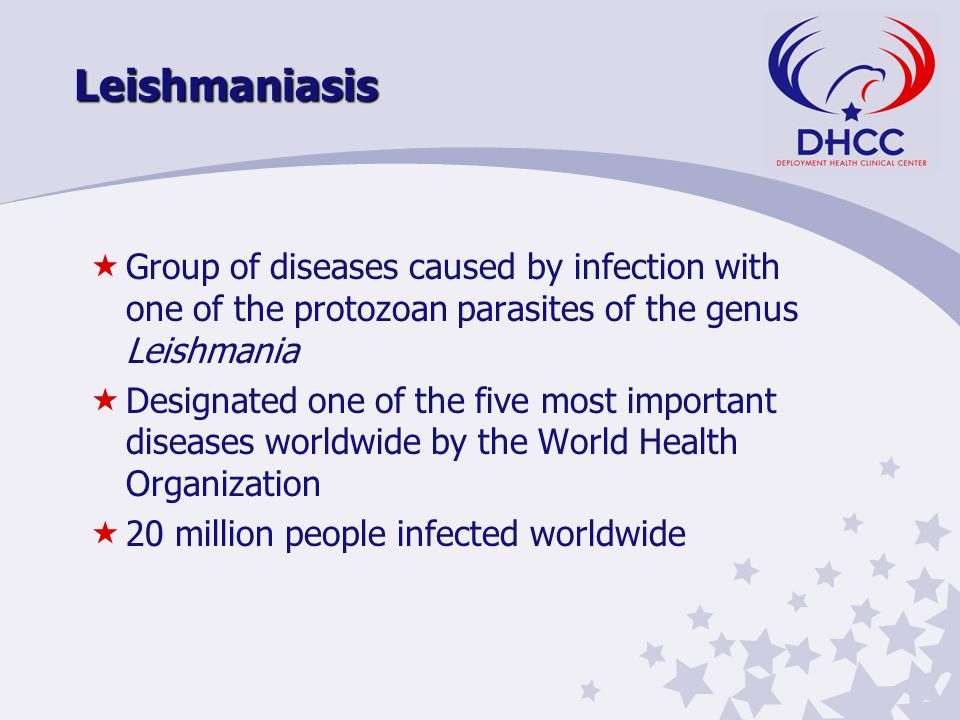Leishmaniasis «Group of diseases caused by infection with one of the protozoan parasites of the genus Leishmania «Designated one of the five most important diseases worldwide by the World Health Organization «20 million people infected worldwide