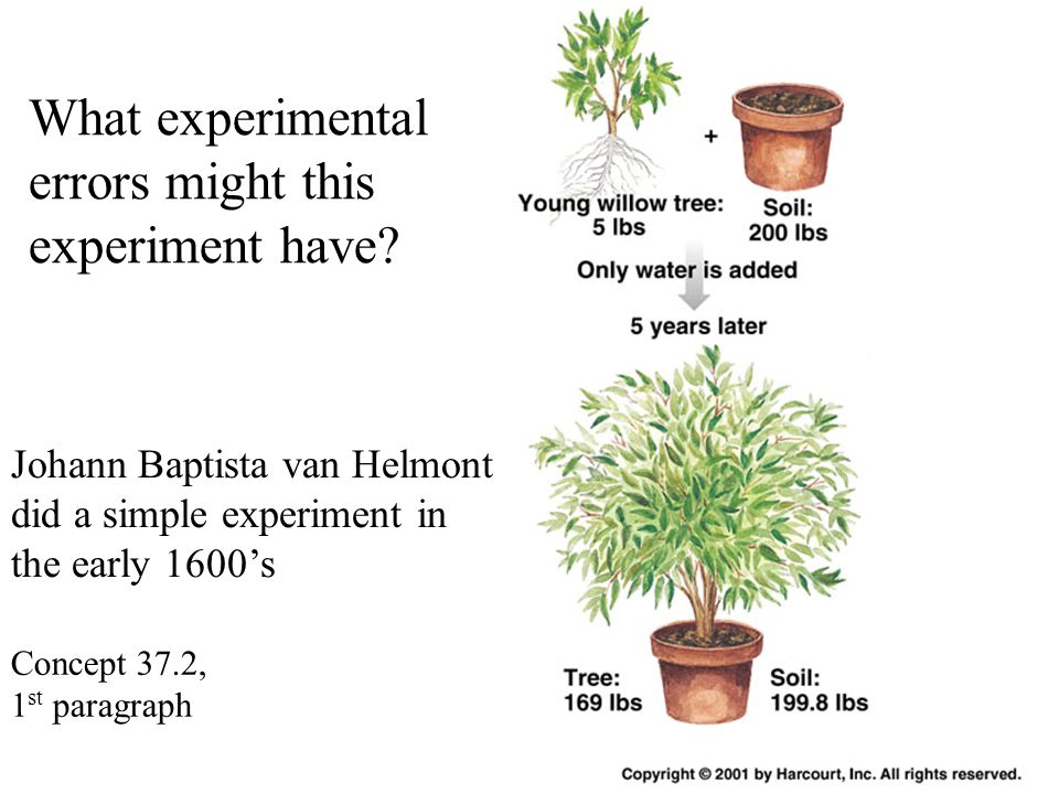 Johann Baptista van Helmont did a simple experiment in the early 1600's What experimental errors might this experiment have? Concept 37.2, 1 st paragr
