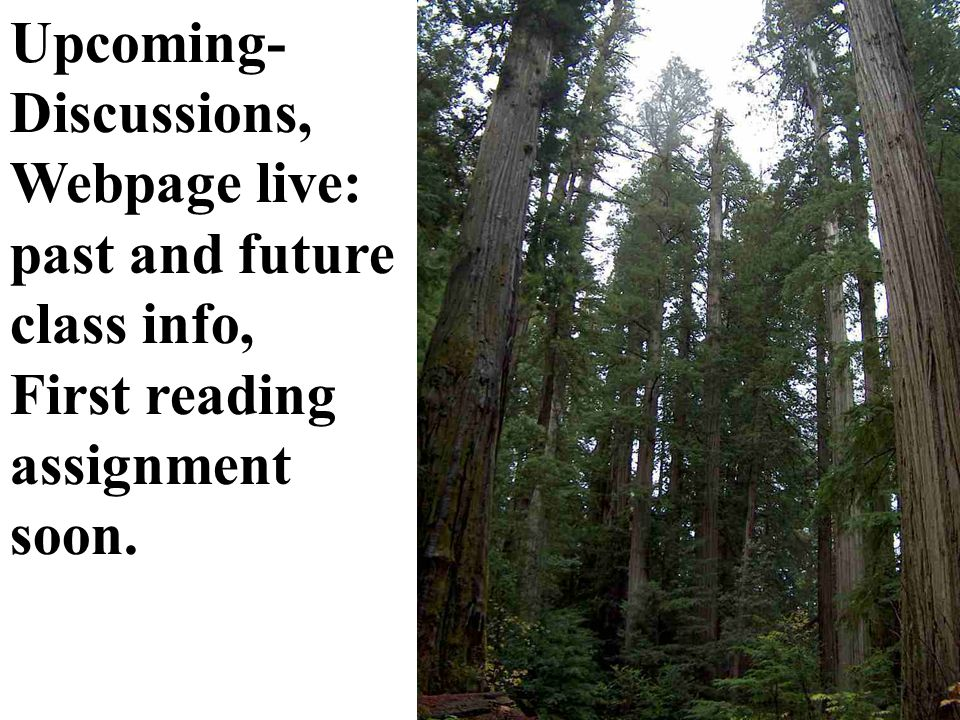 Upcoming- Discussions, Webpage live: past and future class info, First reading assignment soon.