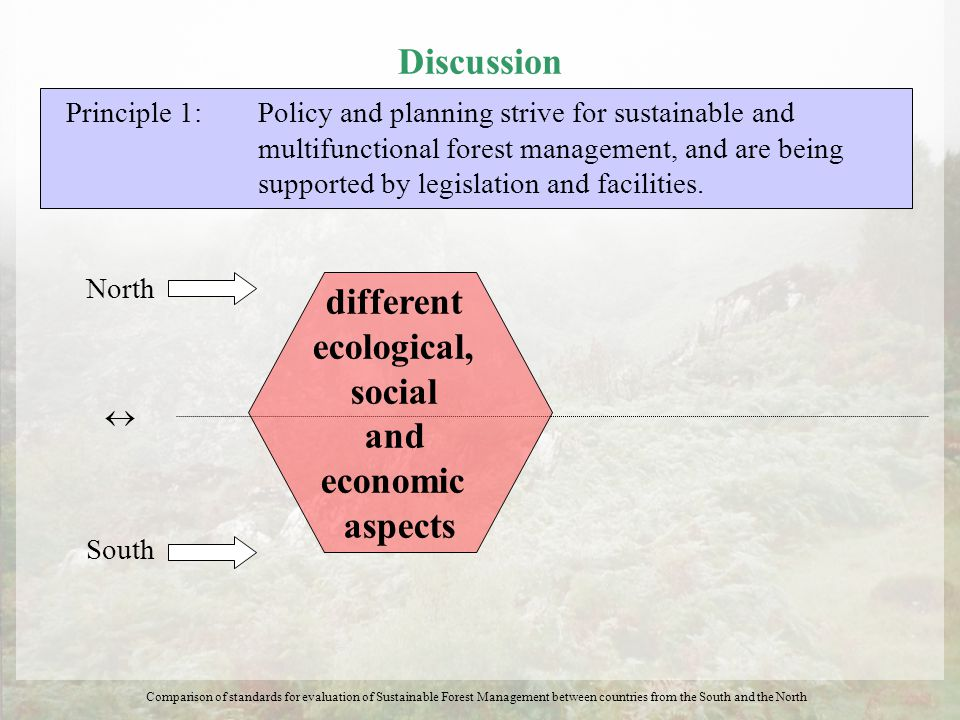 Discussion Principle 1: Policy and planning strive for sustainable and multifunctional forest management, and are being supported by legislation and f
