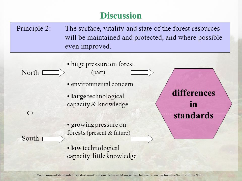 Discussion Principle 2: The surface, vitality and state of the forest resources will be maintained and protected, and where possible even improved. No