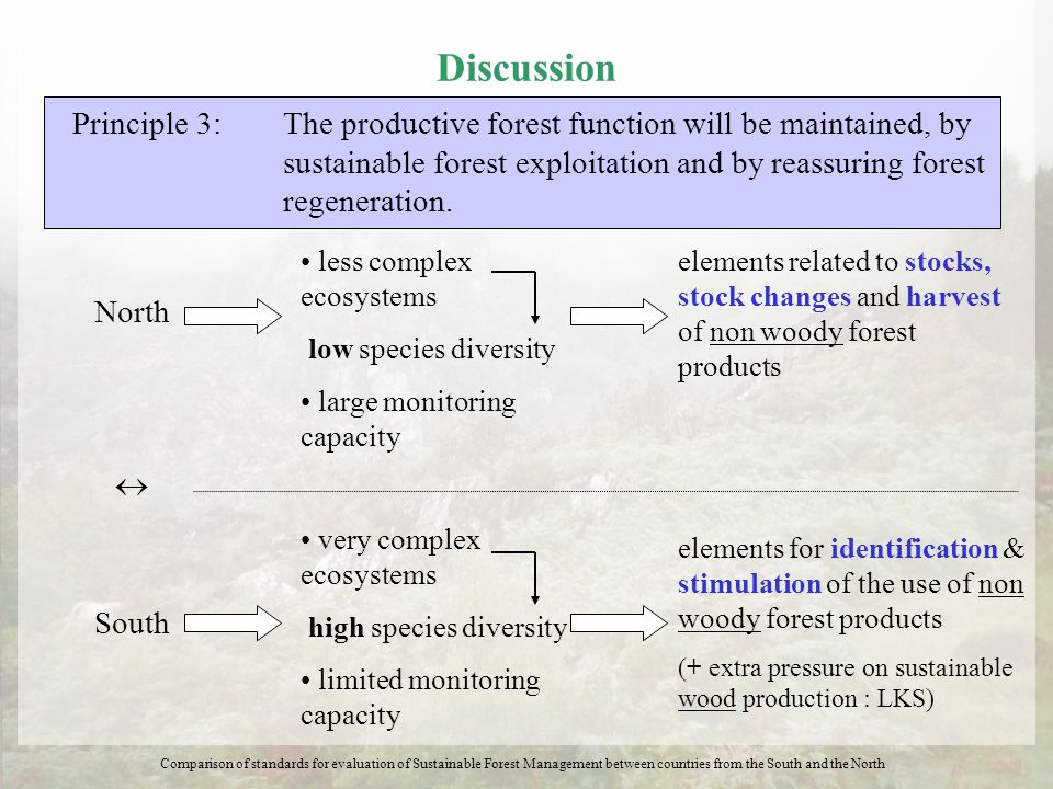 Discussion Principle 3: The productive forest function will be maintained, by sustainable forest exploitation and by reassuring forest regeneration. N