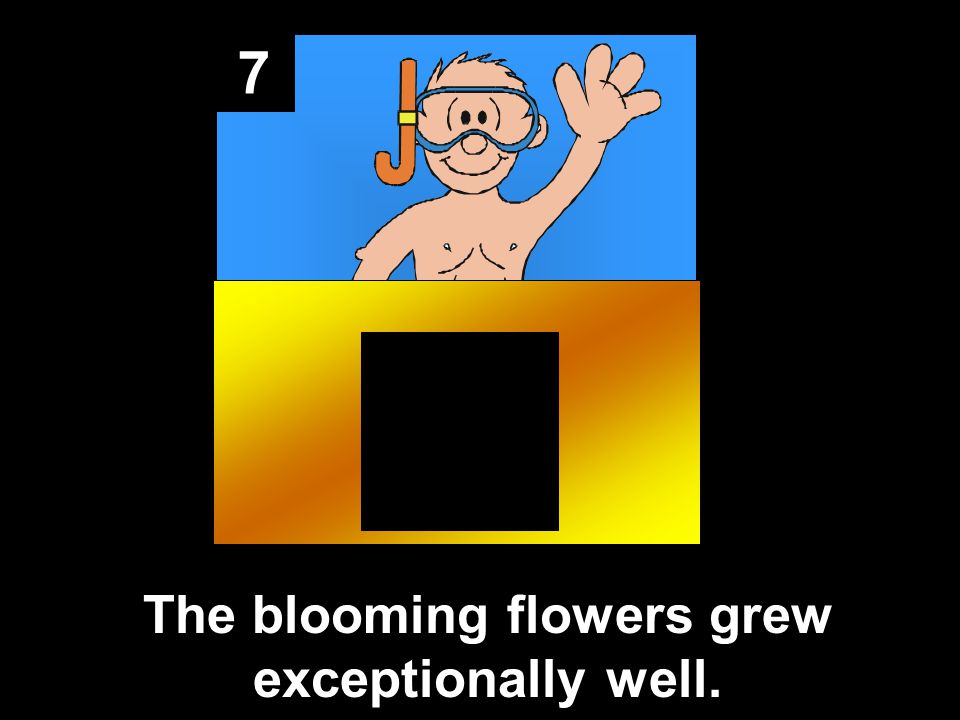 7 The blooming flowers grew exceptionally well.