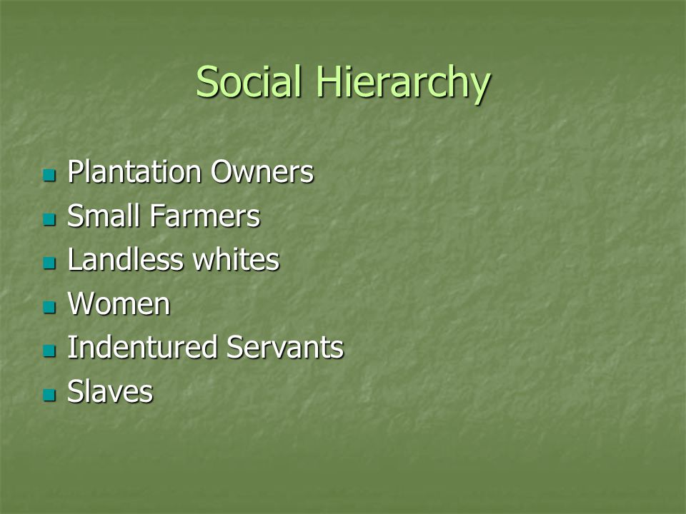 Social Hierarchy Plantation Owners Plantation Owners Small Farmers Small Farmers Landless whites Landless whites Women Women Indentured Servants Indentured Servants Slaves Slaves