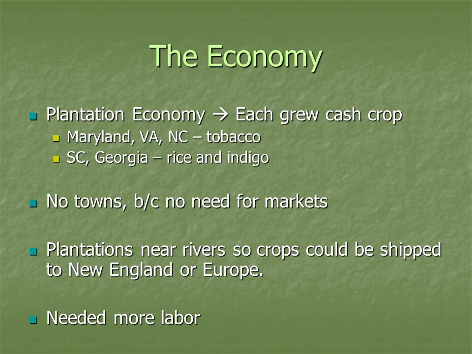 The Economy Plantation Economy  Each grew cash crop Plantation Economy  Each grew cash crop Maryland, VA, NC – tobacco Maryland, VA, NC – tobacco SC, Georgia – rice and indigo SC, Georgia – rice and indigo No towns, b/c no need for markets No towns, b/c no need for markets Plantations near rivers so crops could be shipped to New England or Europe.