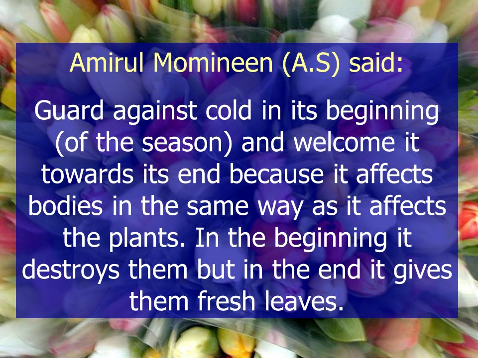 Amirul Momineen (A.S) said: Guard against cold in its beginning (of the season) and welcome it towards its end because it affects bodies in the same w