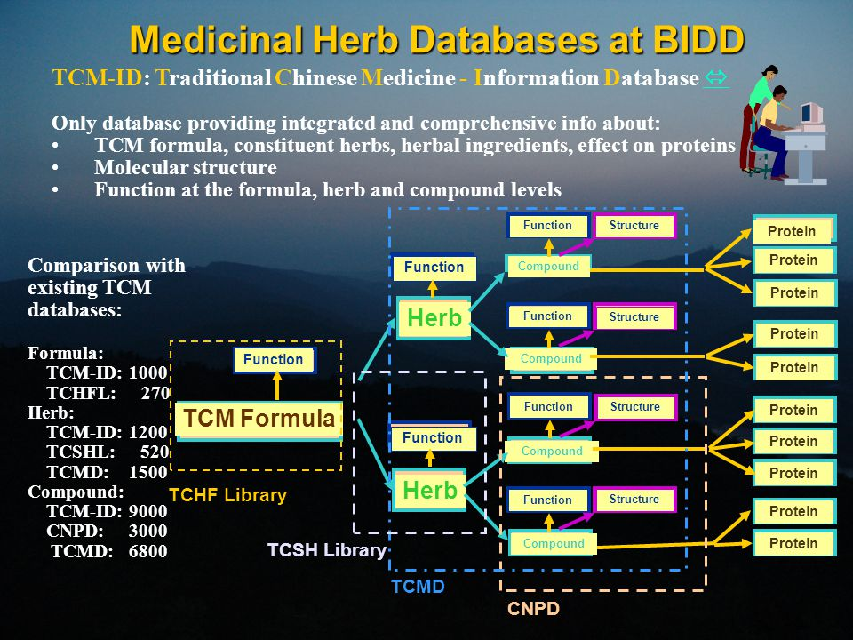 Medicinal Herb Databases at BIDD Comparison with existing TCM databases: Formula: TCM-ID: 1000 TCHFL: 270 Herb: TCM-ID: 1200 TCSHL: 520 TCMD: 1500 Com