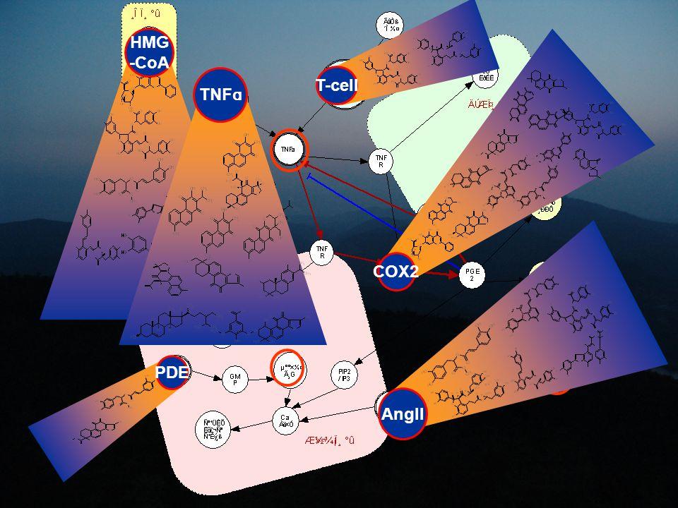 HMG -CoA T-cell PDE TNF ɑ COX2 AngII
