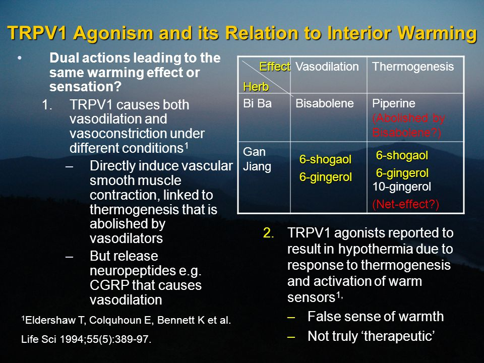 TRPV1 Agonism and its Relation to Interior Warming Dual actions leading to the same warming effect or sensation? 1.TRPV1 causes both vasodilation and