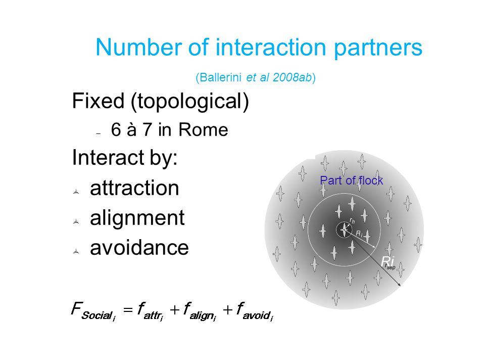 Number of interaction partners (Ballerini et al 2008ab) Fixed (topological)  6 à 7 in Rome Interact by:  attraction  alignment  avoidance Part of flock Ri