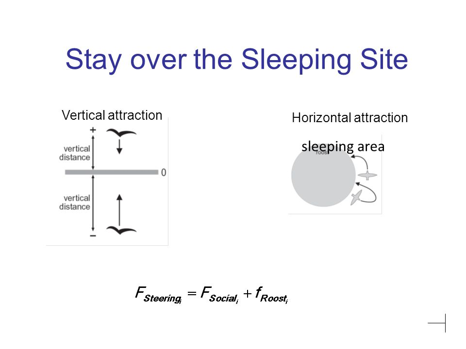 Stay over the Sleeping Site Horizontal attraction Vertical attraction sleeping area