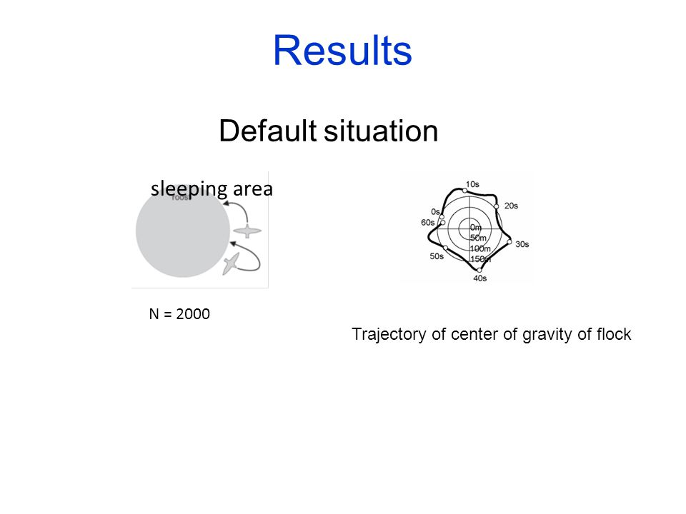 Results Default situation sleeping area N = 2000 Trajectory of center of gravity of flock