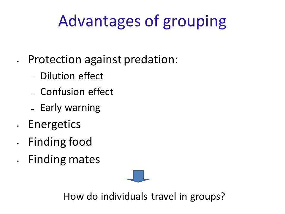 Advantages of grouping Protection against predation: – Dilution effect – Confusion effect – Early warning Energetics Finding food Finding mates How do individuals travel in groups