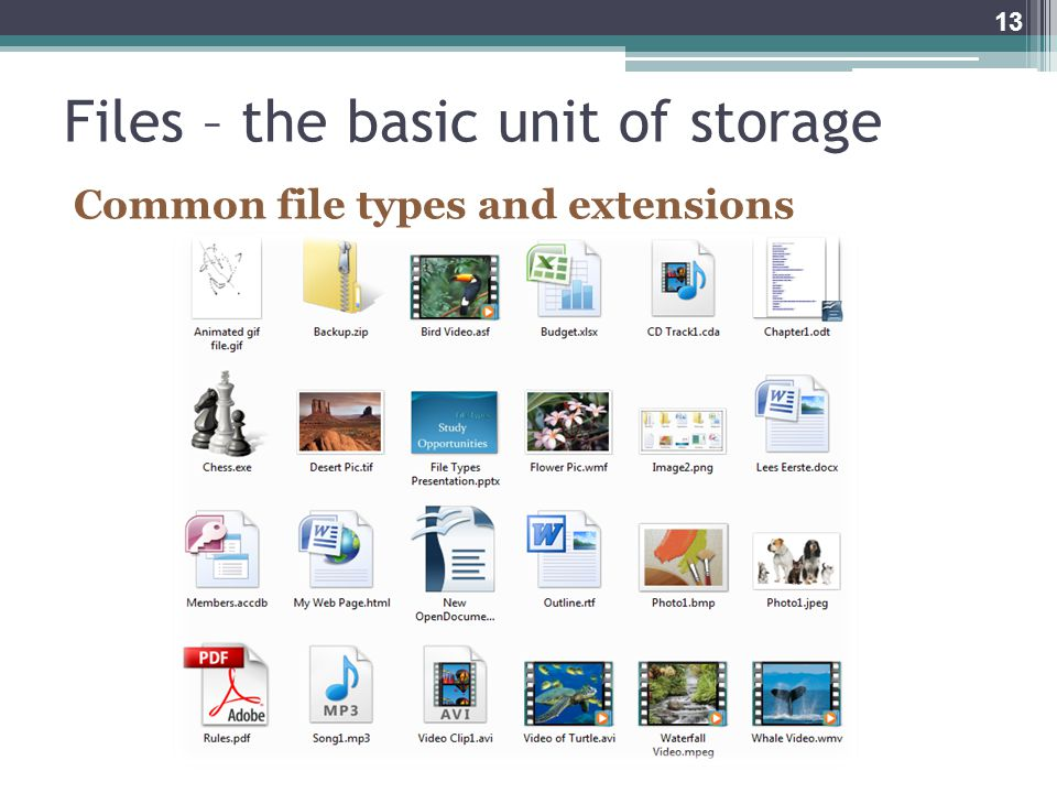 Files – the basic unit of storage Common file types and extensions 13