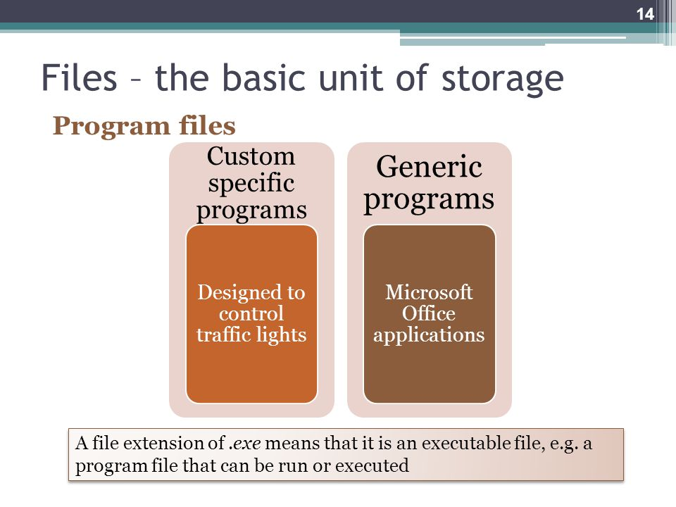Files – the basic unit of storage Program files Custom specific programs Designed to control traffic lights Generic programs Microsoft Office applications A file extension of.exe means that it is an executable file, e.g.