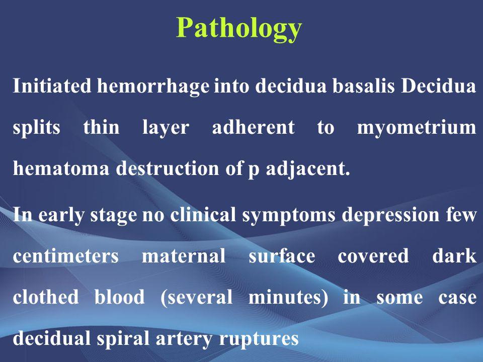 Pathology Initiated hemorrhage into decidua basalis Decidua splits thin layer adherent to myometrium hematoma destruction of p adjacent.